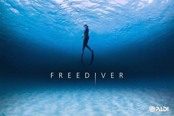 freediving course in st. thomas USVI