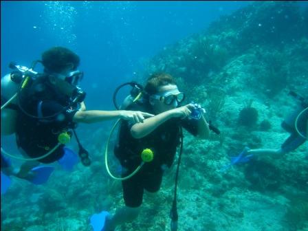 Patagon Dive Center - St. Thomas & St. John - US Virgin ...
